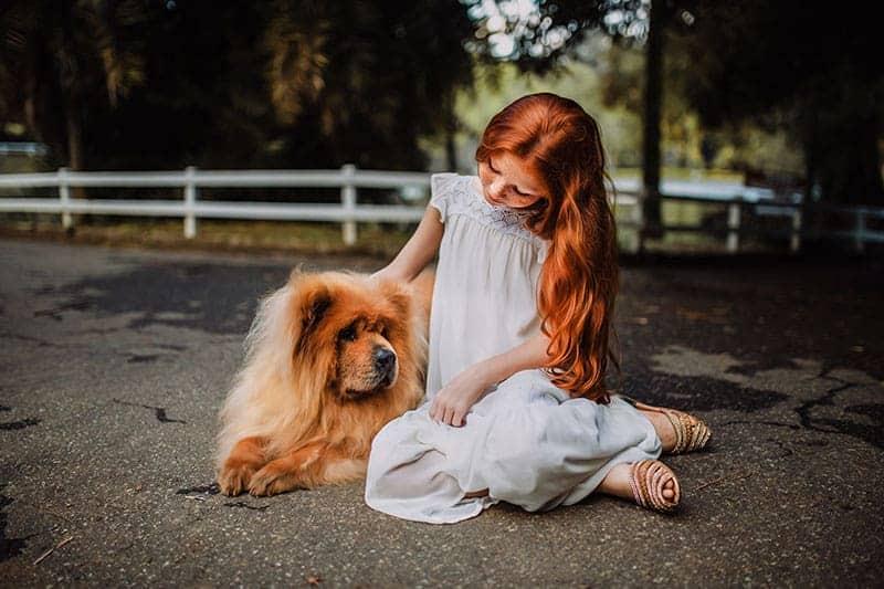 Jaar van de Hond