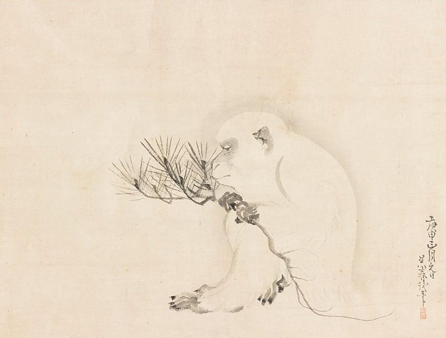 white ape 5